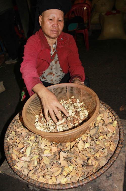 Người Dao Đỏ dùng thảo dược thay trà