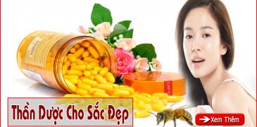 sua ong chua111