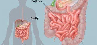 Các bệnh đường tiêu hóa thường gặp