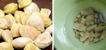 Mẹo chữa đau dạ dày bằng hạt bưởi