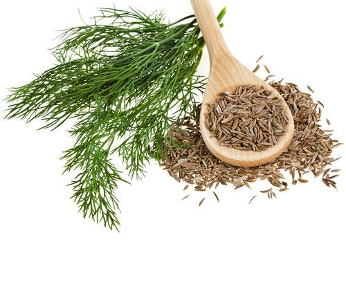 Trong dân gian sử dụng thì là và hạt thì là rất phổ biến để chữa trị các bệnh có liên quan tới đường tiêu hóa như chữa trướng bụng đầy hơi, táo bón, tiêu chảy.