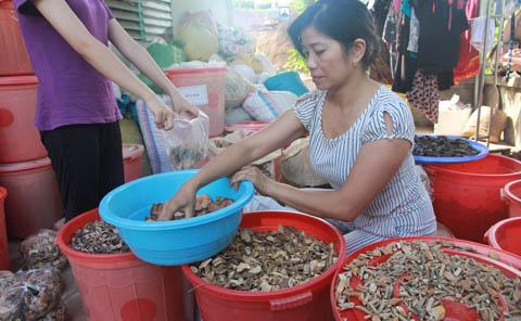 Hoang-Tuyet-Mint-soi-than_4_1