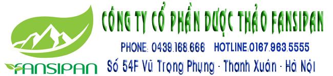 banner fansipan copy