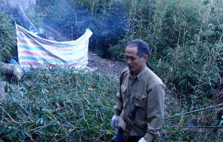 Ông Lâm phát trúc, dựng lều ngủ giữa rừng