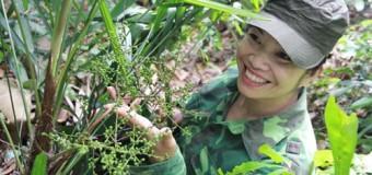 Lang y xinh đẹp 30 năm vào rừng tìm thảo dược Viagra