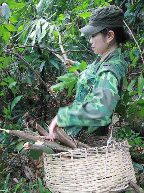 Chị Minh tự đi rừng lấy thuốc