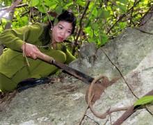 Cây thuốc kỳ dị khắc chế bệnh xương khớp của nữ lang người Thái