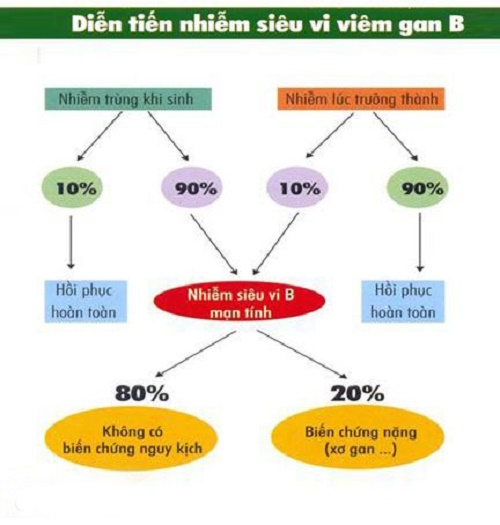 Đừng lo lắng khi nhiễm phải virut VIÊM GAN B - ẢNH 2