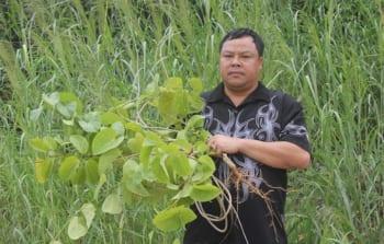 Luc-Xuan-Ut-3