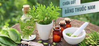 Những bài thuốc thiên nhiên hỗ trợ cải thiện bệnh gout